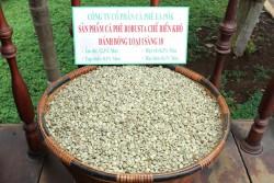 Cà phê Robusta chế biến khô đánh bóng sàng 18